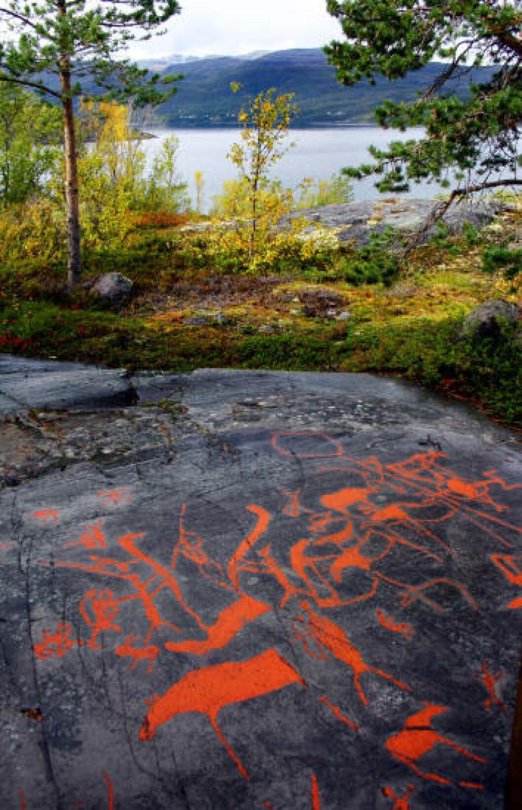 <strong>ALTA MUSEUM:</strong> I indre del av Altafjorden ligger Nord-Europas største samling av helleristninger laget av jeger- og fangstfolk. Foto: KIRSTEN M. BUZZI