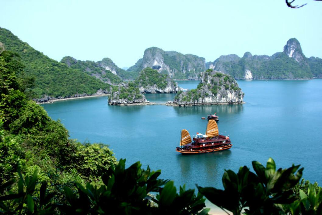 HALONG BAY: Det Unesco-vernede området byr på spektakulære kalksteinklipper og øyer du drar ut til med båt fra fastlandet. Foto: WIKIMEDIA COMMONS