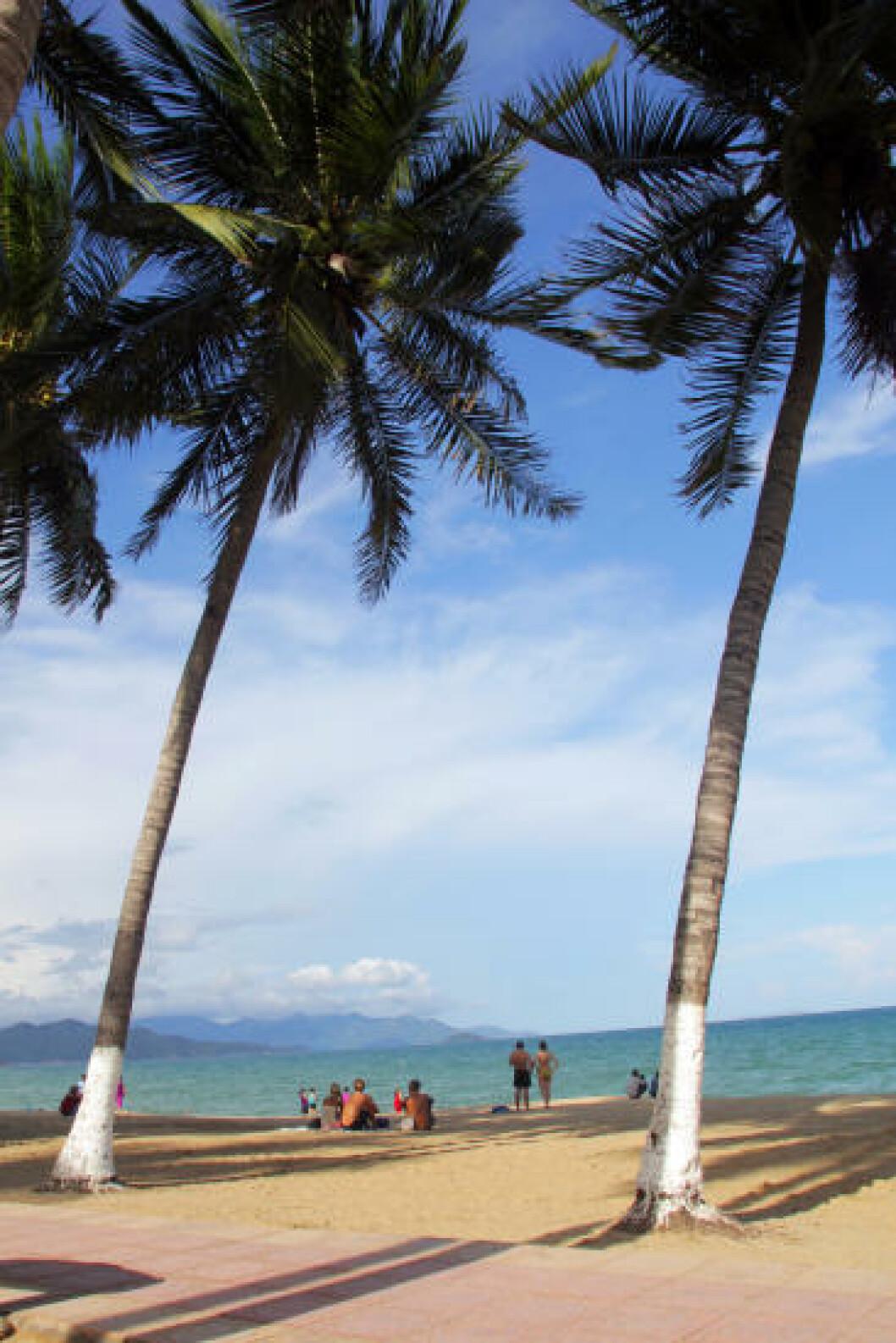 NHA TRANG: I badebyen Nha Trang er det påfallende mye som minner om Miami. Den sju kilometer lange sandstranda bader i solskinn, mens badeløver vaker i bølgene. Foto: RUNAR LARSEN