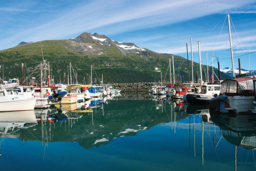 <strong>CRUISEHAVN:</strong> Fra Whittier kan du mønstre på korte og lange cruiseturer i fjordene. Foto: RUNAR LARSEN
