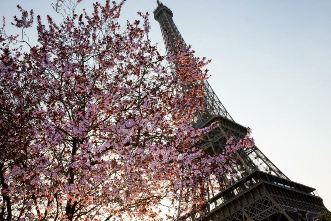 9. PARIS, FRANKRIKE Foto: PHILIPPE WOJAZER / REUTERS / NTB SCANPIX