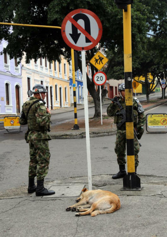 <strong>POLITIHUND:</strong> Det står politifolk på nesten hvert gatehjørne i Bogota, men politihunden tar seg en velfortjent hvil. Foto: EIVIND PEDERSEN