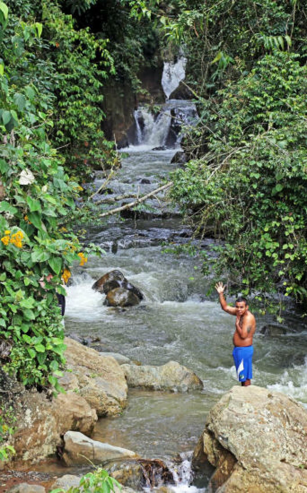 <strong>VAKKERT:</strong> Du skal ikke reise langt ut i regnskogen før du finner slike idylliske badeplasser. Foto: EIVIND PEDERSEN
